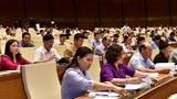 Các thành viên của Quốc hội Việt Nam bỏ phiếu thông qua dự luật An ninh mạng tại Hà Nội vào ngày 12 tháng 6 năm 2018.
