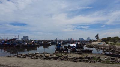 Tàu, thuyền neo đậu tại Cảng cá Thọ Quang.